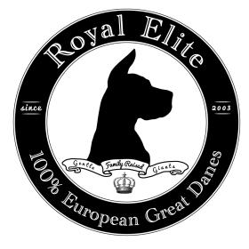 Royal Elite -   Top Quality Family Raised European Great Danes